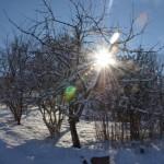 photo 2013-01-16_1