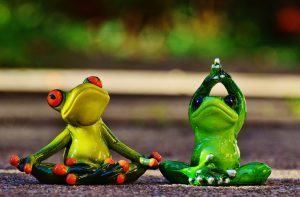 frogs-1030284_960_720